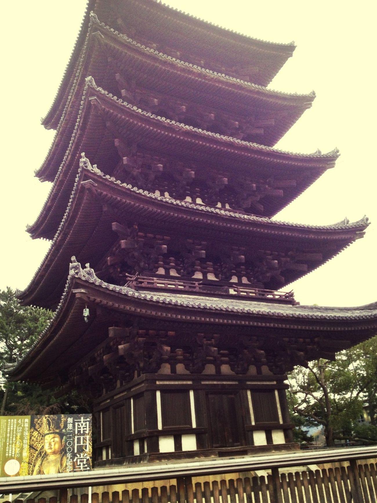 奈良公園^_^