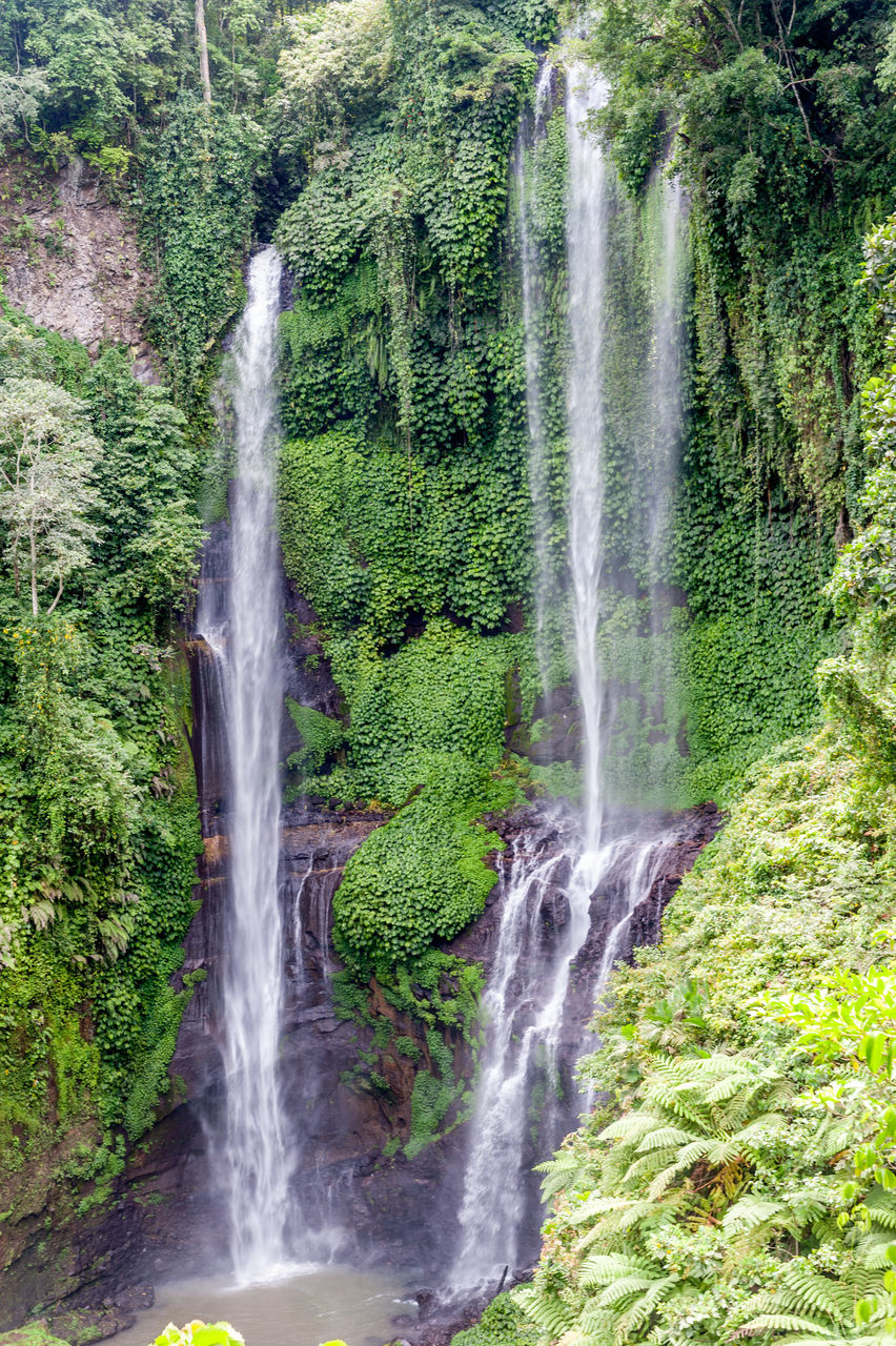 waterfall, scenics, beauty in nature, motion, water, nature, forest, long exposure, no people, tourism, tranquil scene, travel destinations, outdoors, day, green color, growth, tree, grass, power in nature, freshness