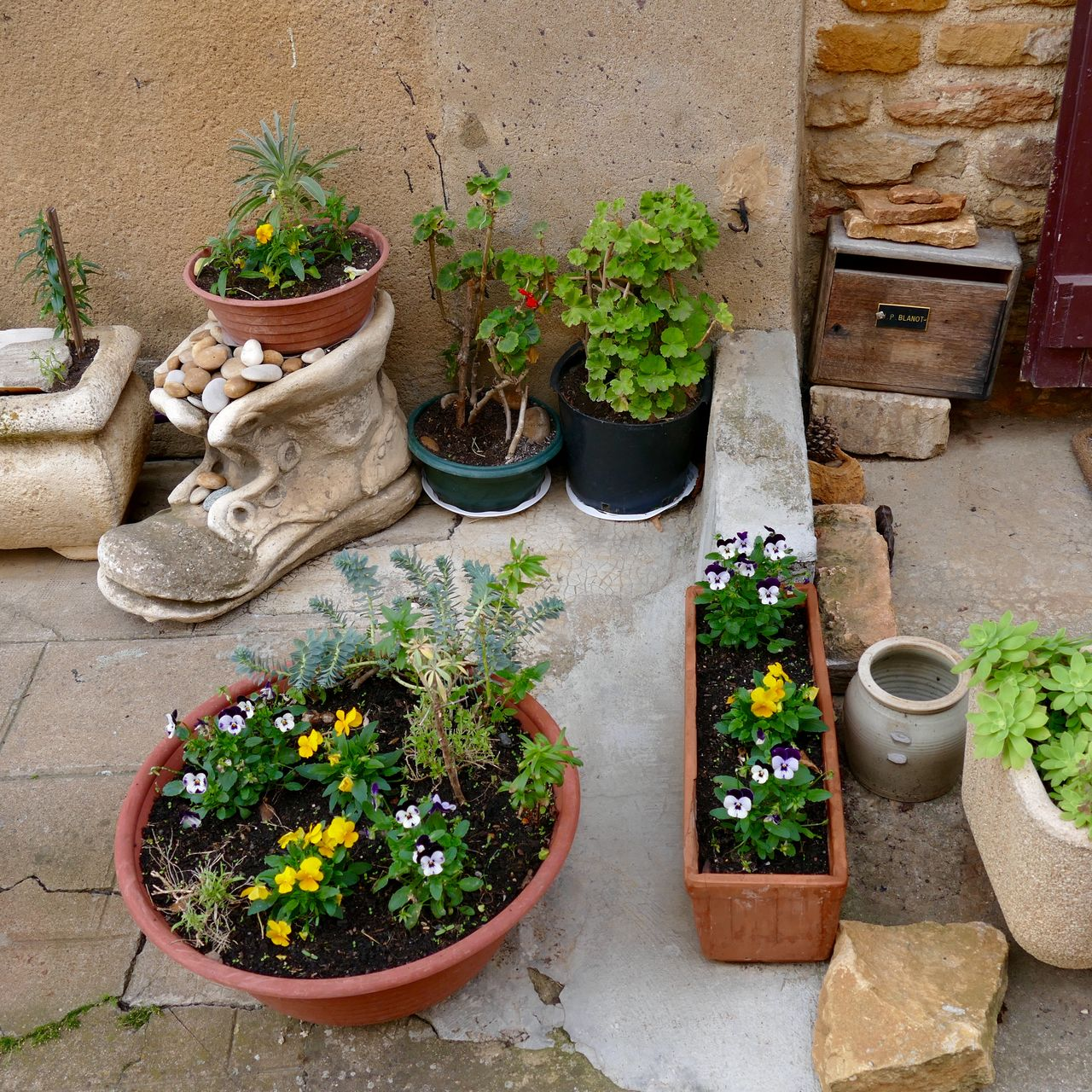 Beautiful stock photos of plant, Architecture, Building Exterior, Day, Domestic Garden