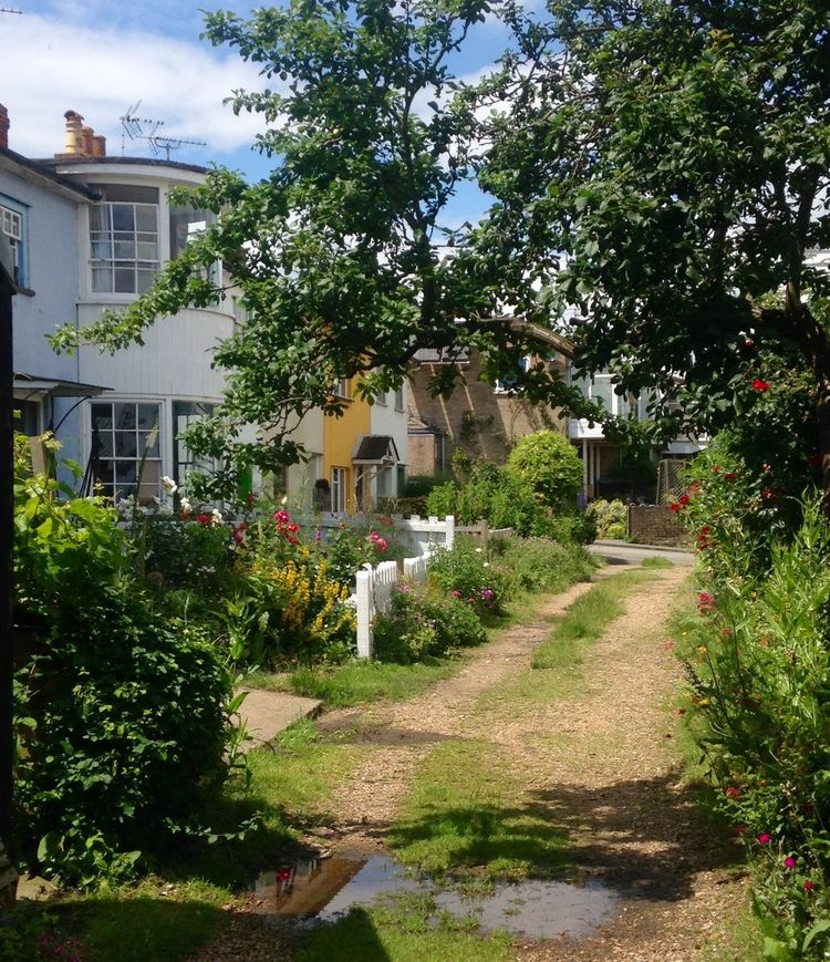 A pretty little walk down to Maldon estuary Cottages Path Flowers Bushes And Trees Old Buildings Sunshine