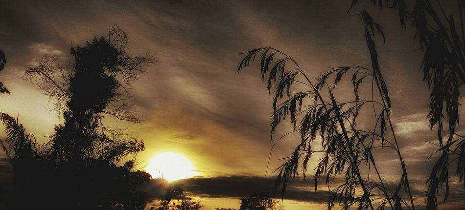 Landscapephotography Noise Sunset Popular Borneophoto_hunter