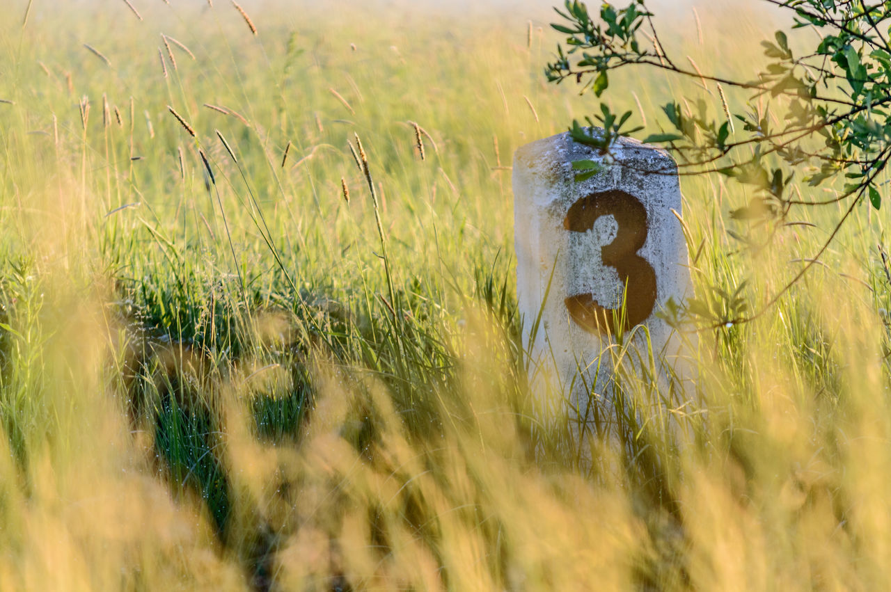 Number 3 On Distance Marker Amidst Grassy Field