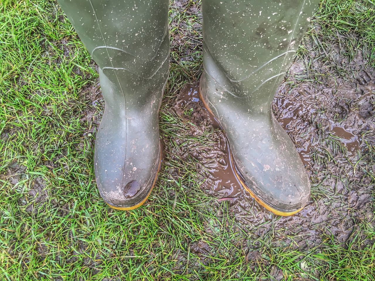 Low Section Human Foot Shoe Grass Human Leg High Angle View Growth Nature One Person Day Outdoors Water Close-up Human Body Part Animal Themes People Mud Muddy Boots Wellington Boots Wellies