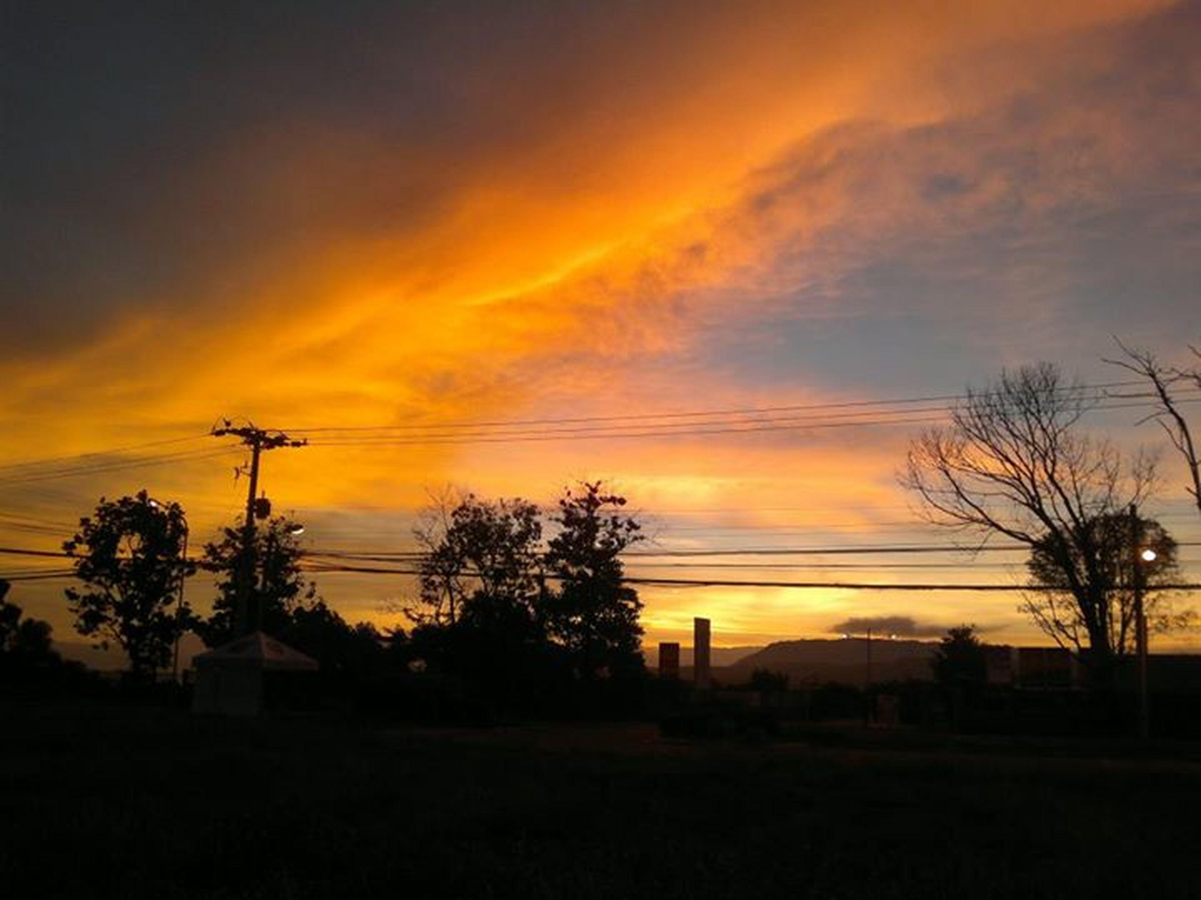 sunset, silhouette, orange color, sky, scenics, beauty in nature, tree, tranquility, tranquil scene, nature, cloud - sky, idyllic, landscape, dramatic sky, power line, cloud, moody sky, dark, romantic sky, electricity pylon