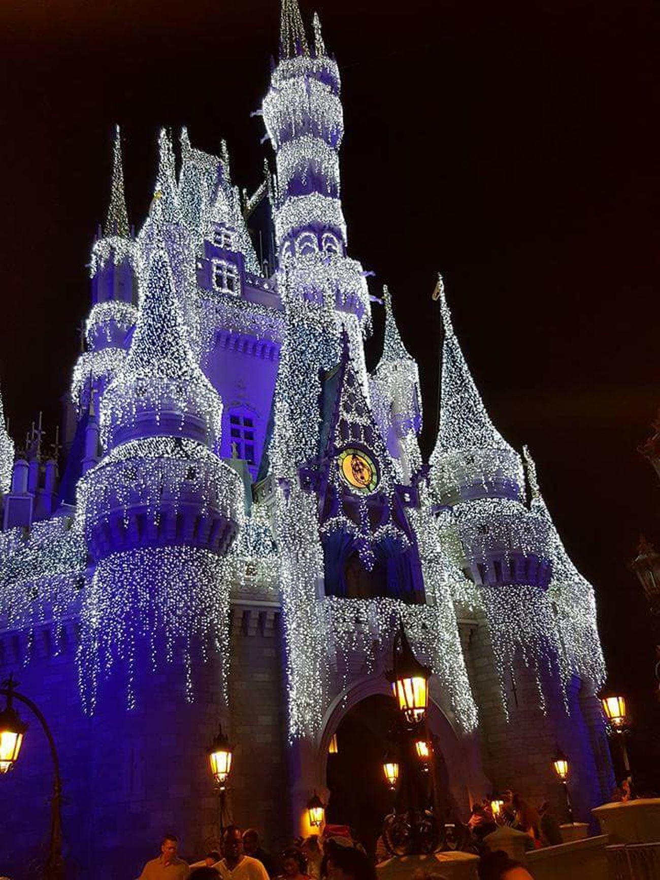 Cindarella's Castle Cinderella's Castle Lit Up Christmas Lights Walt Disney World Florida Frozen Inspired Gorgeous Shine Bright Like A Diamond