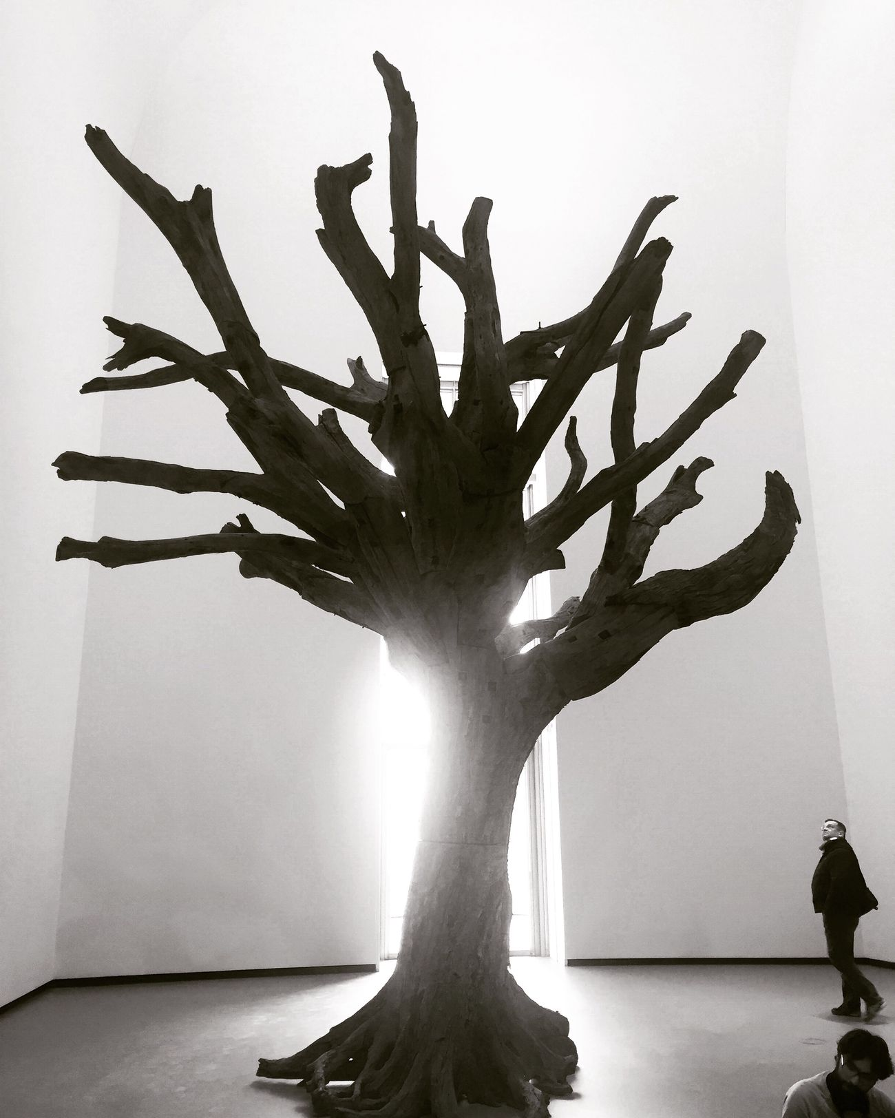 Art People Watching People And Art Art Inspection Sculpture Trees Tree TreePorn Fondation Louis Vuitton  Blackandwhite Black And White Blackandwhite Photography Black & White Light Ai Weiwei