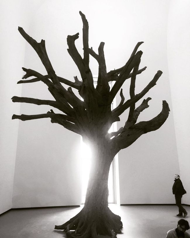 Art People Watching People And Art Art Inspection Sculpture Trees Tree TreePorn Fondation Louis Vuitton  Blackandwhite Black And White Blackandwhite Photography Black & White Light Ai Weiwei