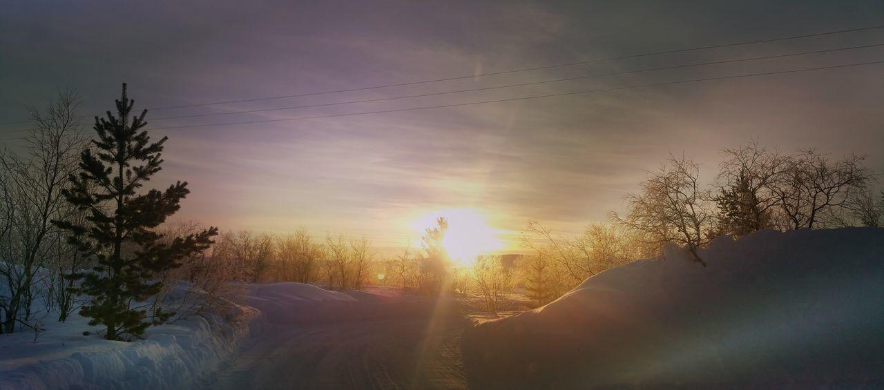 Whinter Colors Taking Photos Neiden First Eyeem Photo Enjoying Life Sunshine Taxi Sun Road