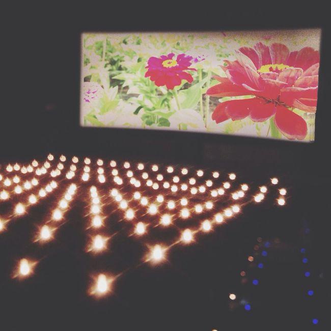上映前の何も写ってないスクリーンに花を多重で重ねてみた。 多重露光 スクリーン 映画館 Spec