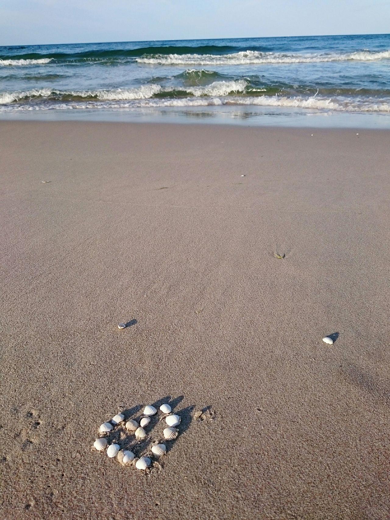 Beautiful stock photos of heart, Animal Shell, Arrangement, Beach, Beauty In Nature