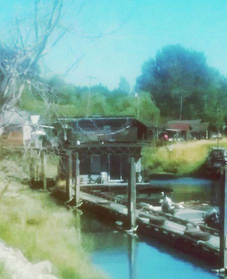 Reflection River Collection, River View Finn Slough Village Built Over A River Delta