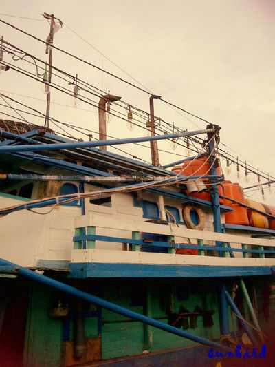 fishing boats (catches: squid) Ship Travelling INDONESIA