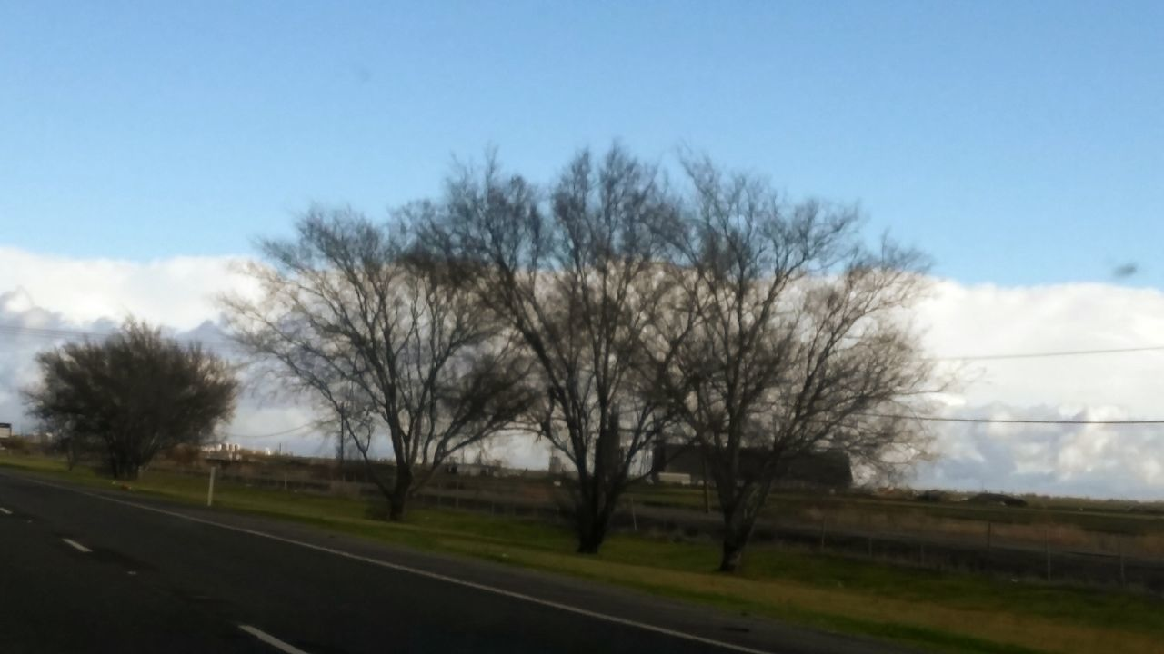 Sunday Drive Interstate 80 Trees And Sky
