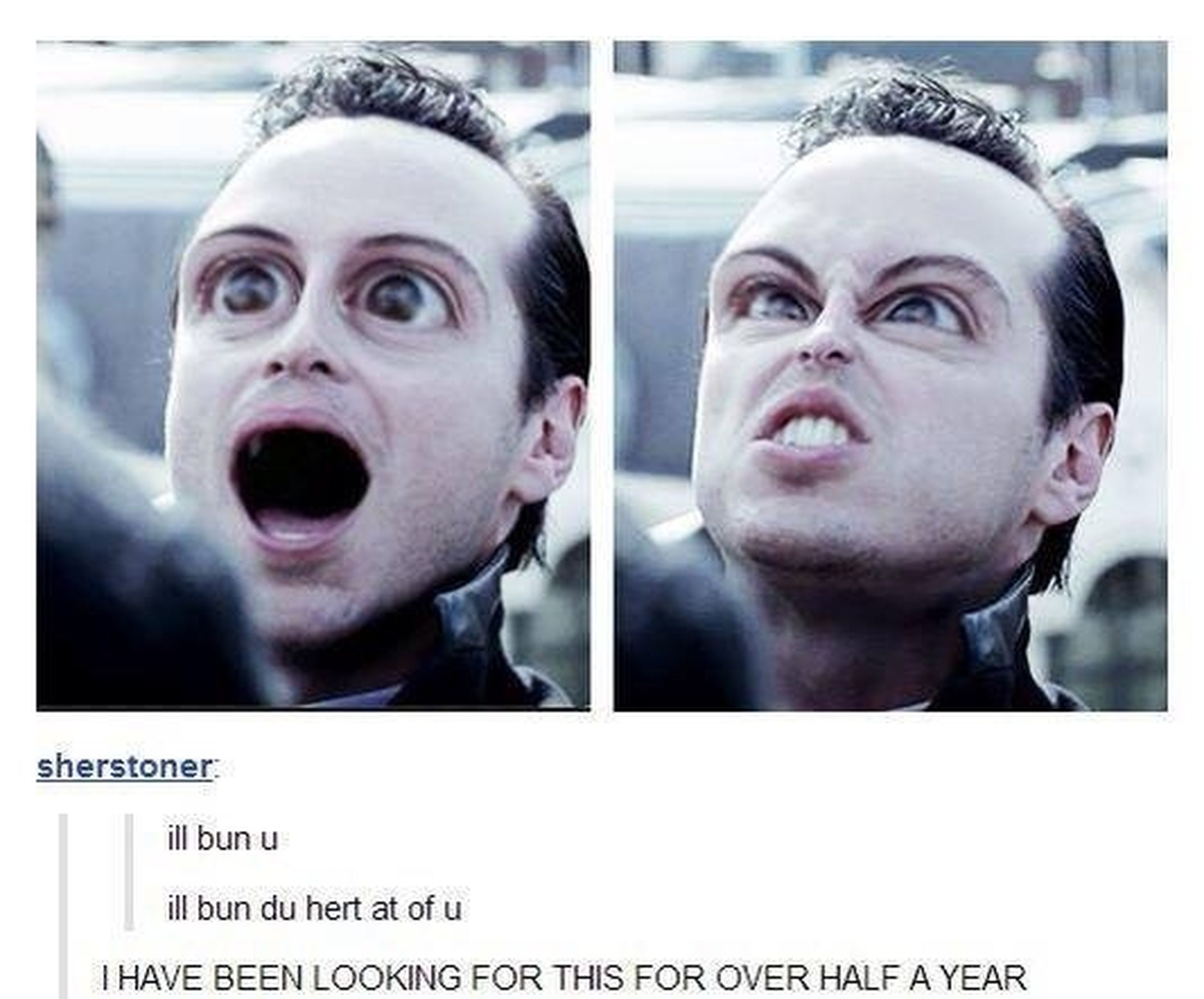 I'LL NEVER GET OVER THIS PICTURE XD Sherlock Moriarty Laughing My Ass Off Unbelieveably Funny