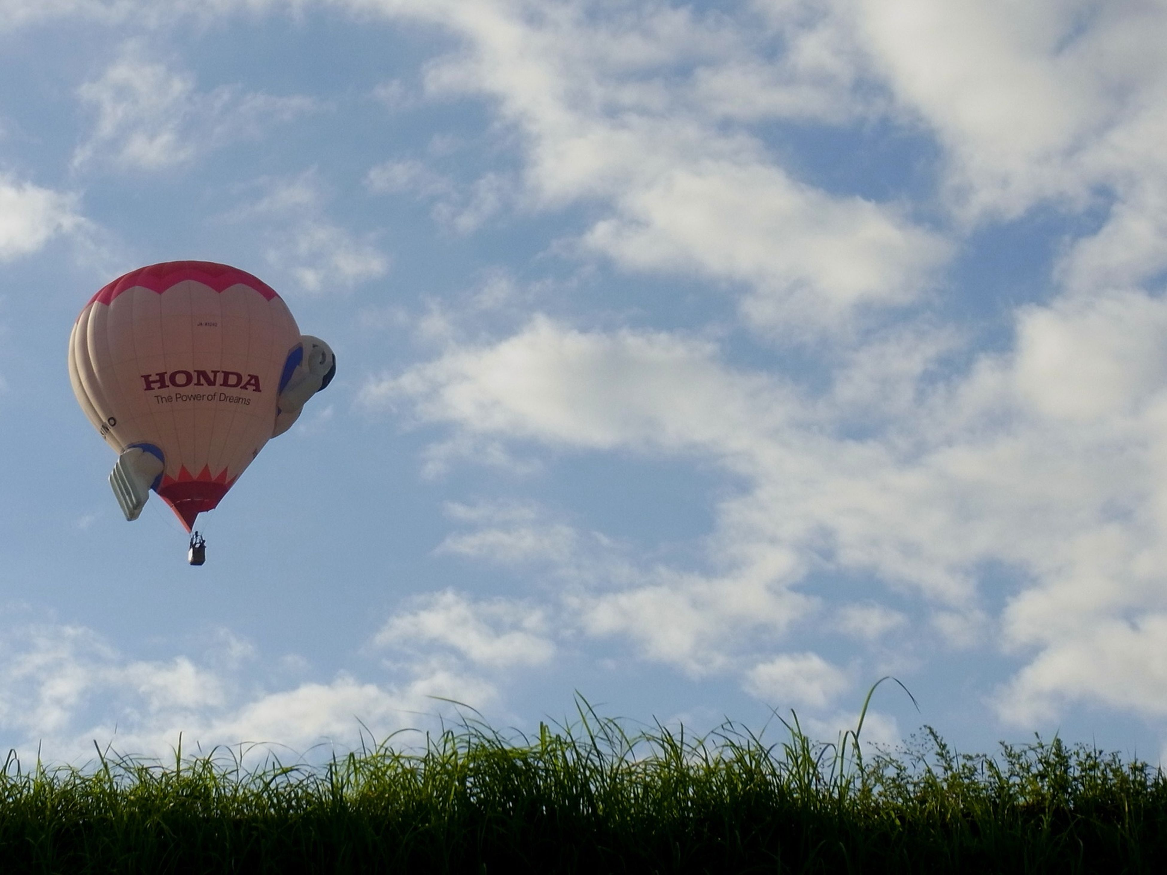 sky, cloud - sky, cloud, low angle view, cloudy, grass, nature, tranquility, field, day, growth, outdoors, plant, scenics, tranquil scene, beauty in nature, hot air balloon, flying, tree, no people
