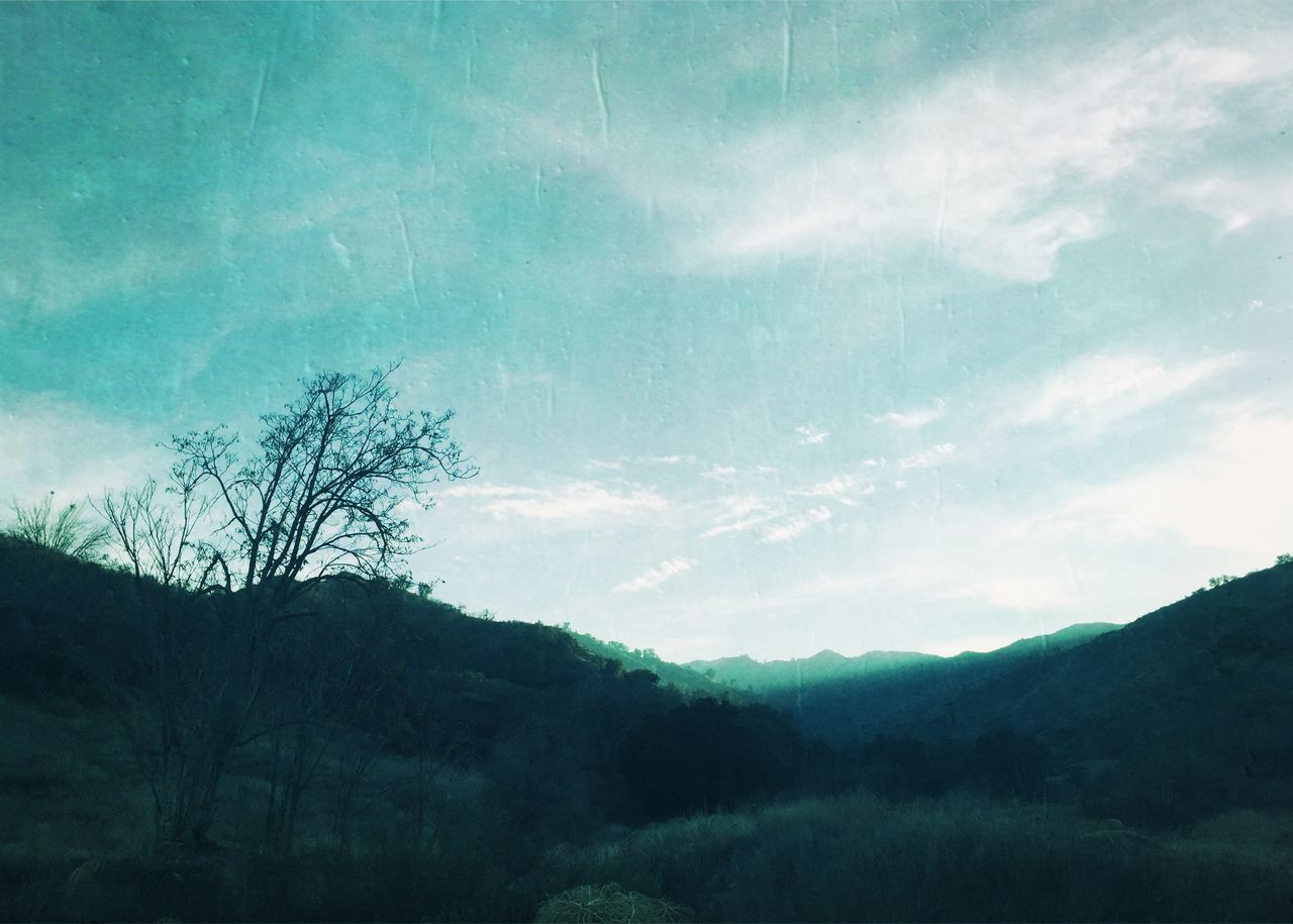 nature, tree, beauty in nature, forest, tranquility, landscape, mountain, no people, silhouette, scenics, outdoors, sky, day