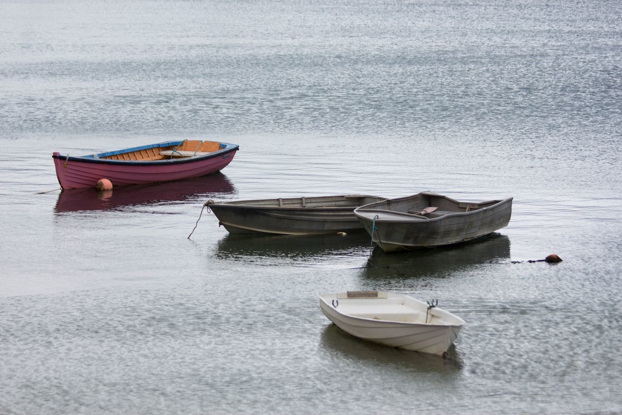 Beautiful stock photos of delfin, Absence, Boat, Day, Empty