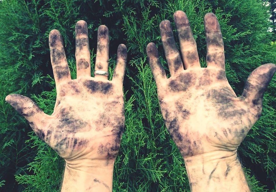 Working Hands