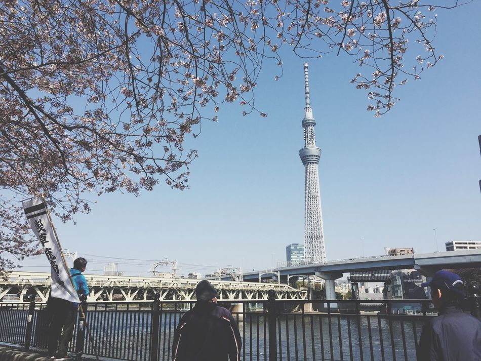 Real People Architecture Built Structure Tourism Clear Sky Men Tower Travel Destinations Women Outdoors Travel Tree Day Communication Leisure Activity Large Group Of People Sky Lifestyles City Low Angle View Japan スカイツリー Asakusa