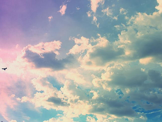 Sky Nature Beauty In Nature Cloud - Sky Low Angle View Scenics Sky Only Tranquility No People Backgrounds Day Outdoors Full Frame