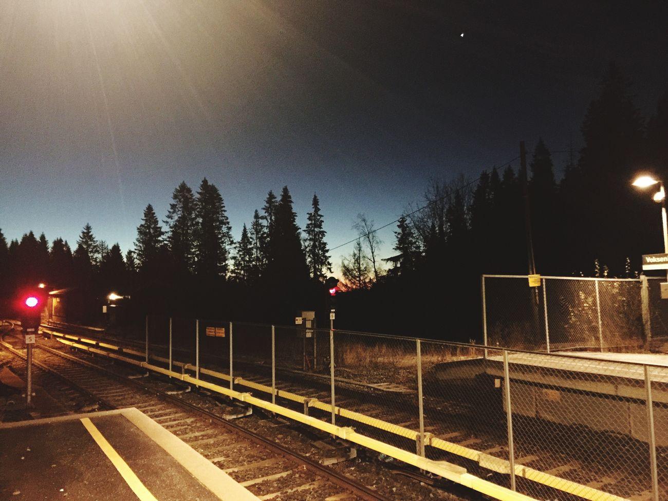morning, sunrise, train, signal Soaking Up The Sun