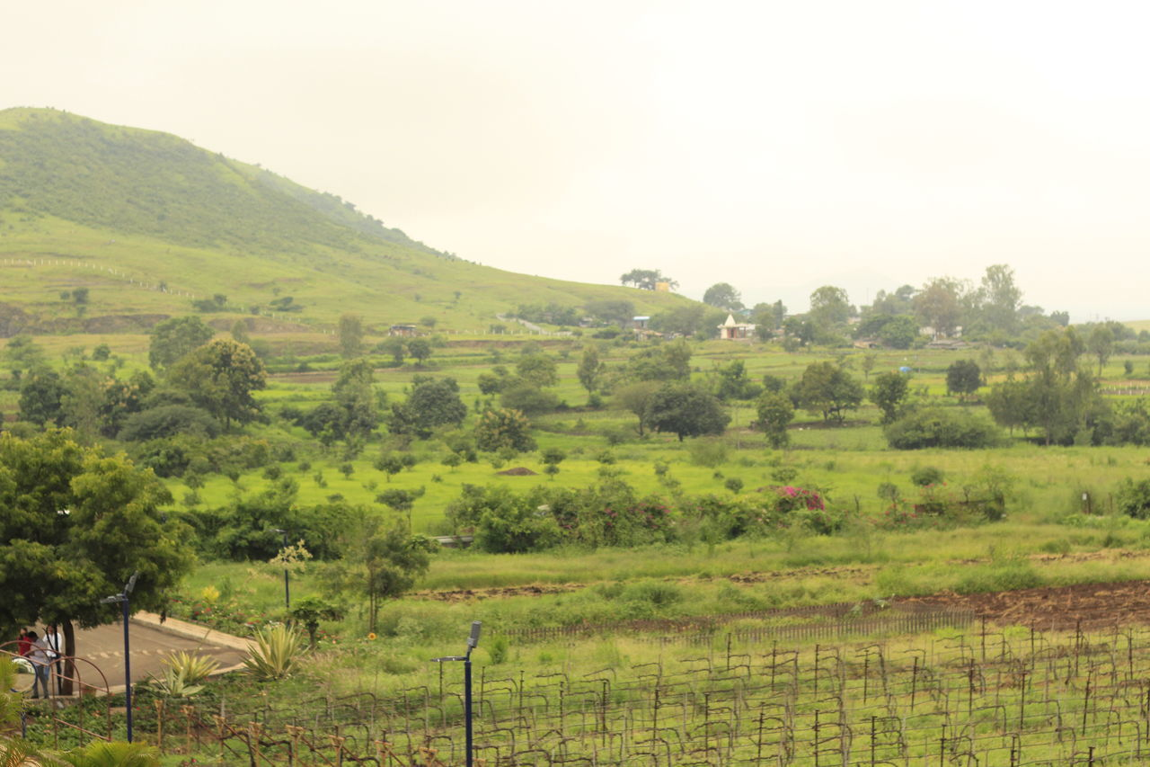 Monsoons and hills! Agricultural Building Agriculture Clear Sky Day Farm Field House Landscape Nature No People Outdoors Rural Scene Scenics Sky Tree