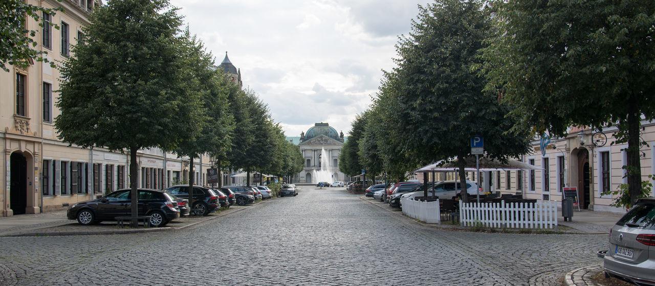 Dresden Springbrunnen Wasserspiele Straße Street Bäume Barock Viertel
