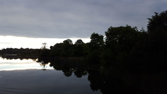 No Filter, No Edit, Just Photography Nature Beautiful Nature Shannon River Mirroring In Water