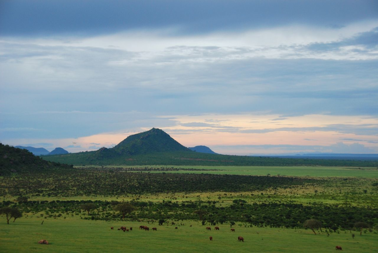 Protecting Where We Play Kenia & Africa Savannah WeatherPro: Your Perfect Weather Shot Sunrise Edge Of The World Great View Greenery African Beauty Mother Nature Is Amazing Mirrorless Flyfish Album Landscape Nature Travel EyeEm Best Shots My Eyes My Nature Landscapes