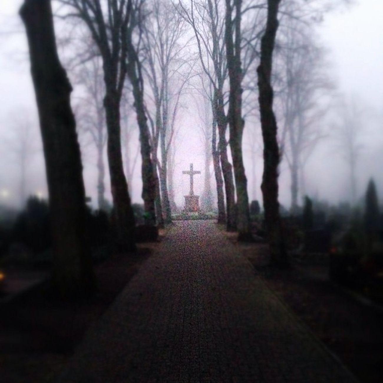 Katholischer Friedhof gronau Nebel Friedhof Gronau Snapseed Fog Kreuz  Watnesuppe IPhone5