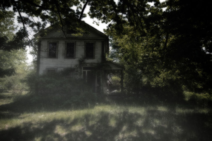 Abandoned House Architecture Beauty In Nature Broken Windows Building Exterior Built Structure Creepy House Day Exterior Foggy Grass Growth Haunted House Nature No People Outdoors Tree