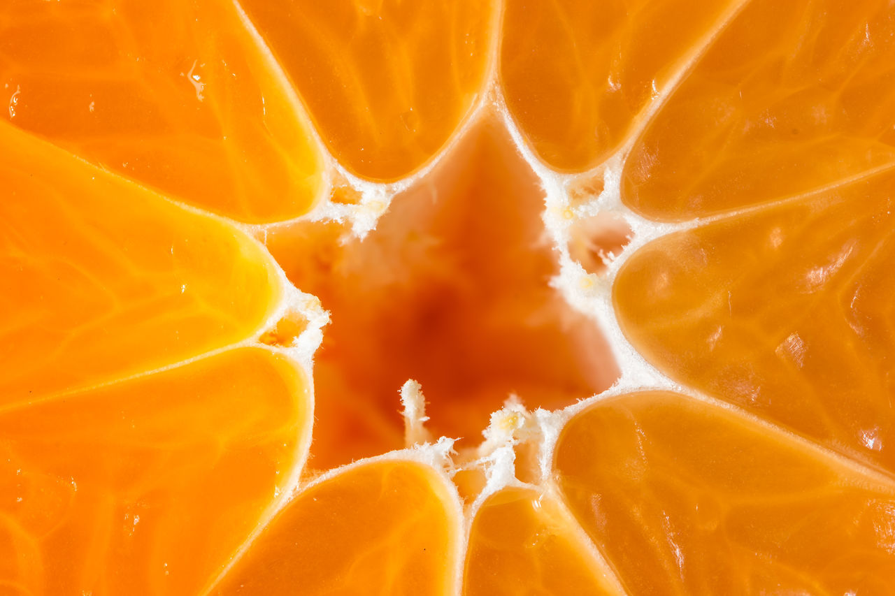 orange Abstract Backgrounds Citrus Fruit Close-up Cross Section Day Food Freshness Fruit Full Frame Grapefruit Healthy Eating Juicy Nature No People Orange Color SLICE Textured