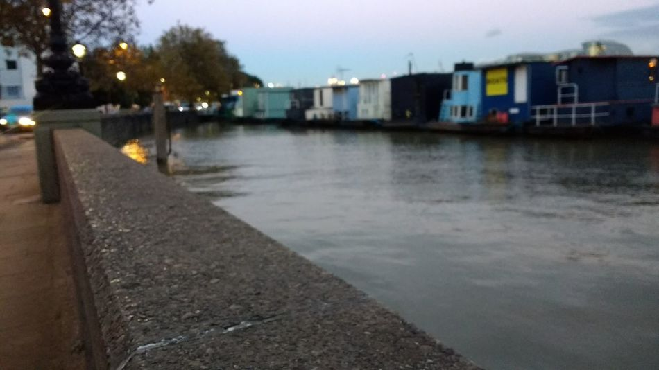 High tide by the houseboats on Chelsea embankment. Architecture Building Exterior Built Structure Chelsea City Day Embankment High Tide Houseboats Illuminated London Nature No People Outdoors River Thames Sky Tree Water