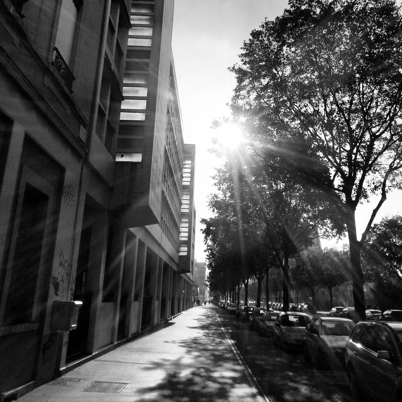 Buildings streets sunlight