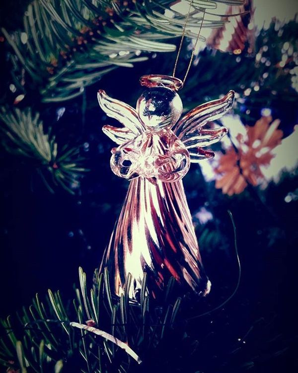 Fröhliche Weihnachten! Merry Christmas! Hyvää Joulua! Joyeux Noël! Kala Christougenna! Vrolijk Kerstfeest! Buon Natale! Sretan Bozic! Wesolych Swiat! Boas Festas! Feliz Navidad! . . .MerryChristmas Hyvääjoulua Fröhlicheweihnachten Feliznavidad Angel Buonnatale Vrolijkerstfeest Joyeuxnoel Sretanbozic Wesołychświąt Boasfestas