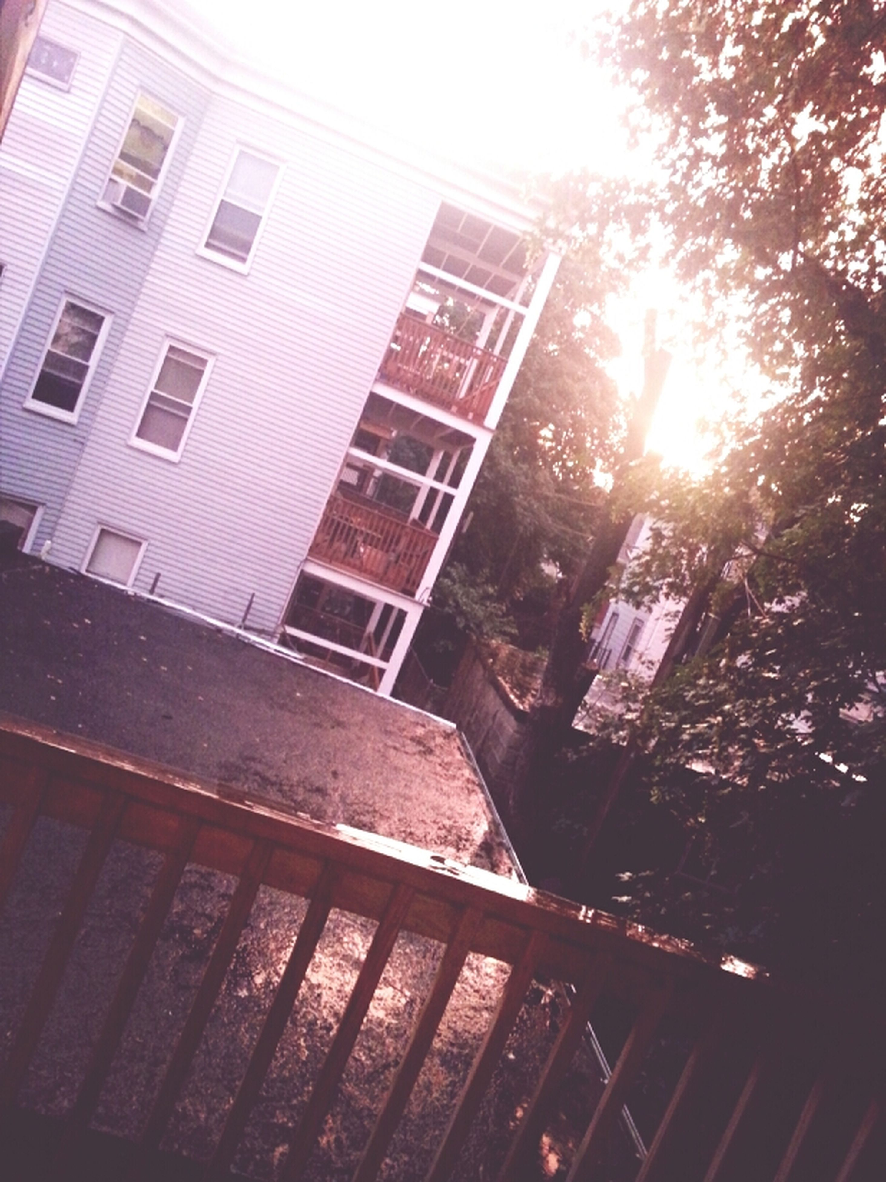 architecture, building exterior, built structure, low angle view, sunlight, sun, sunbeam, building, window, lens flare, city, residential building, sky, tree, sunny, residential structure, day, outdoors, no people, clear sky
