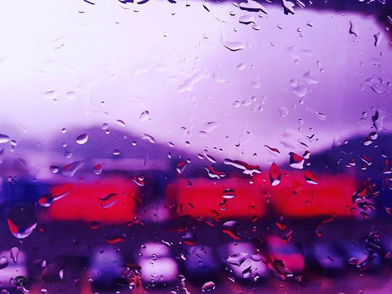Llueve sobre San Pedro Sula. 07.12.15 Fotografia Lluvia Sps Honduras Percepolis12 Nature Gallery_of_all Everycapture Everyshots Rainy Paiscincoestrellas InicioDeSemana Instapic Instadaily Samsung Macro Macrophotography