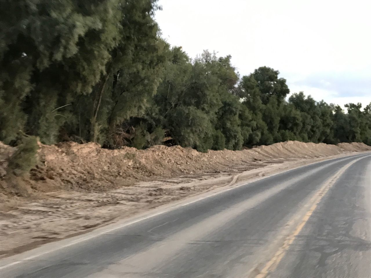 Tree Road The Way Forward Nature Outdoors Day Sand No People Sky Backroad Photography Huggingatree  Non-urban Scene No Edit/no Filter Scenery