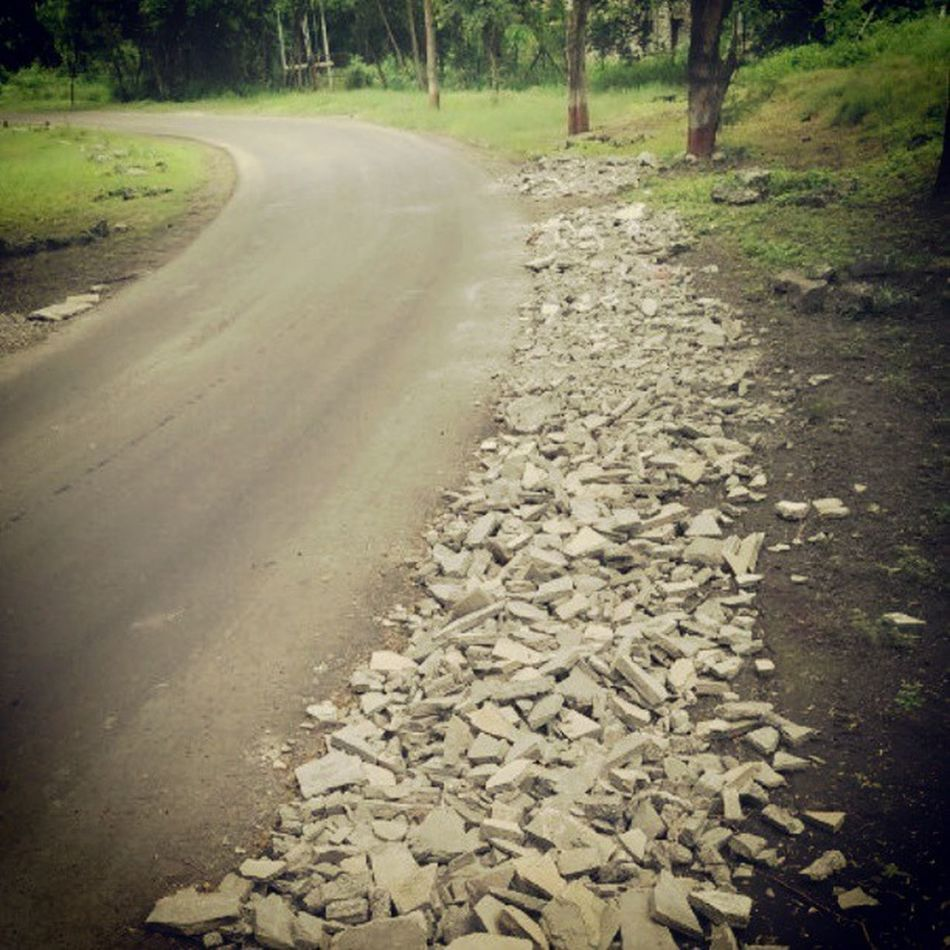 Solitude Roadlesstravelled Nature Gogreen The KIOMI Collection