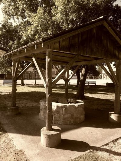 Bridge - Man Made Structure Day Shadow Sunlight Built Structure Outdoors Architecture Transportation No People Water Underneath Tree Nature Sky Well