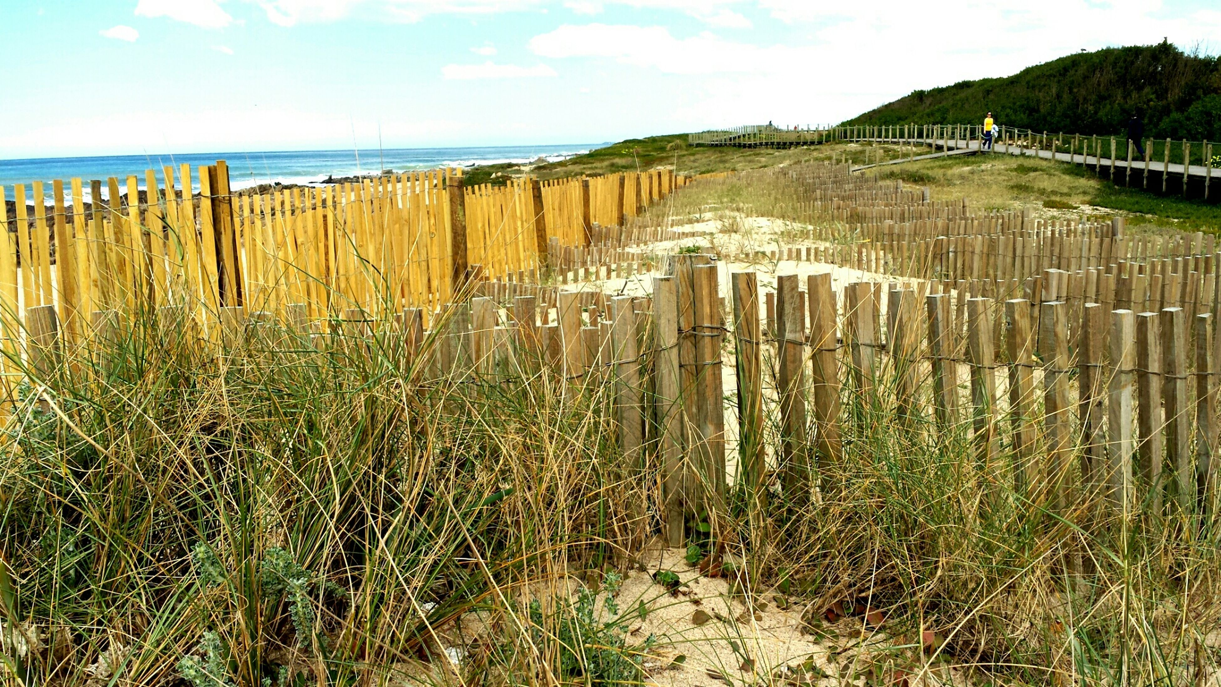 sky, sea, tranquility, tranquil scene, horizon over water, beach, plant, fence, water, scenics, grass, beauty in nature, nature, growth, field, sand, shore, protection, cloud, day