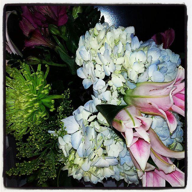 Happy Terrific Tuesday!!! Ilovefreshflowers Backtoworksurprise Myclientsloveme Hydrangeas Peruvianblooms stargazerlilies foliage thankyouAmericasFloristNYC makingdaysbetter appreciated