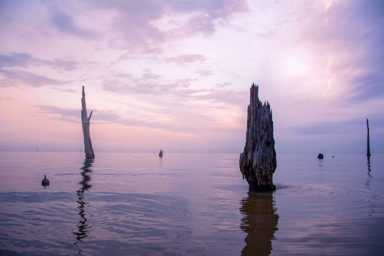 Landscapes With WhiteWall Tranquil Scene Louisiana Sunrise