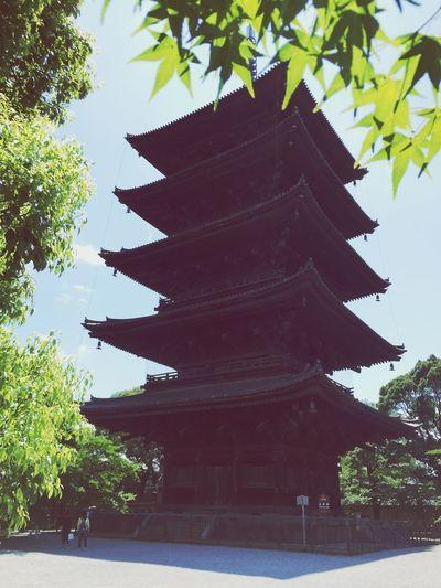 東寺の五重塔。 蒸し暑さはないけど、激アツ。 Kyoto Toji Temple