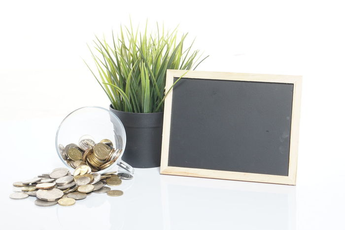 Coin in the jar, black board with green grass on vase. Concept image. Business Chalk Board Green Color Imagination New York Reflection Attention Board Black Boar Boardwalk Close-up Coin Coin In The Jarr Coins Conceptual Image Flower Flower Head Green Grass No People Saving Lives White Desk White Background