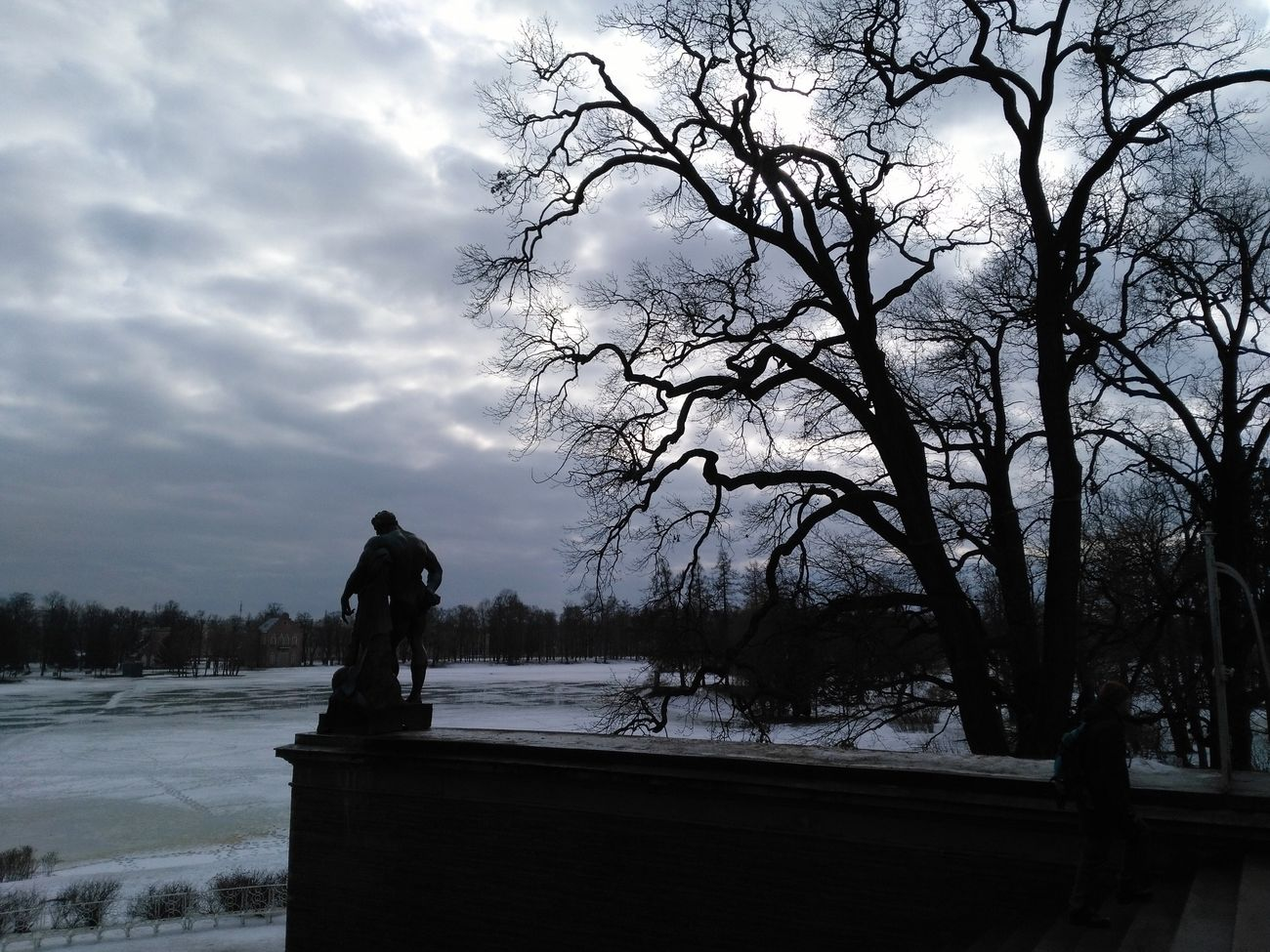 Trees Sculpting A Perfect Body Grey Sky Travel Photography Peterburg Winter