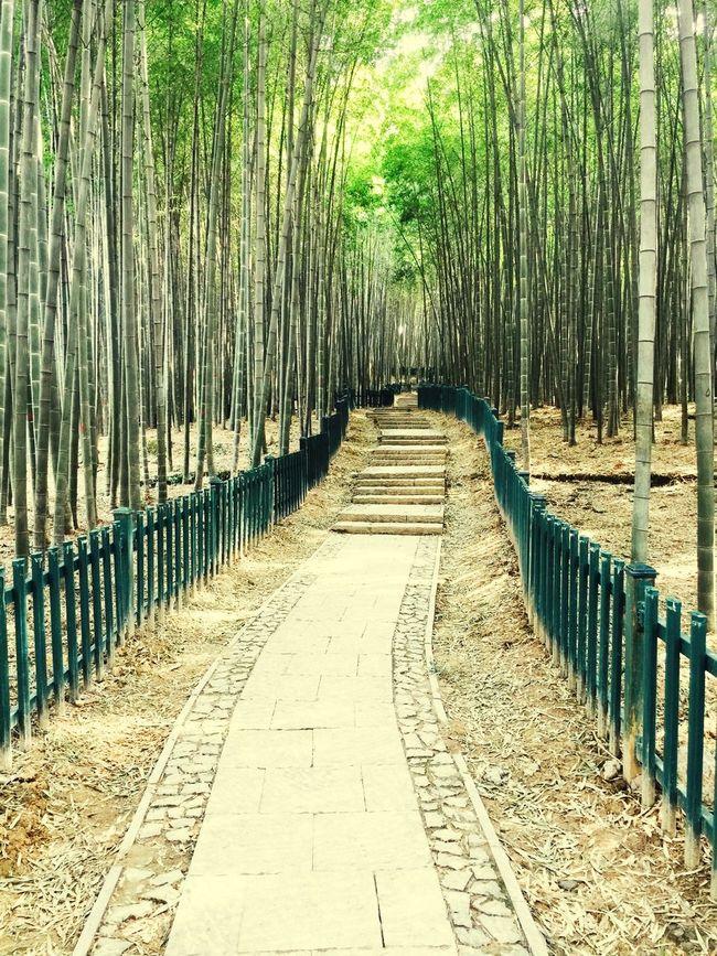 杭州 First Eyeem Photo