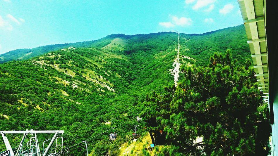 Сафарипарк Геленджик горы красиво вверх Россия Russia фотографии вокруг нас Популярное природароссии