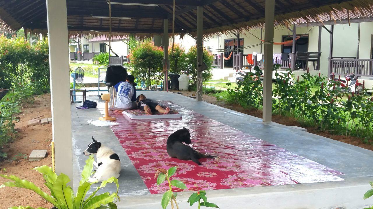 Thai Massage Rawai Muay Thai