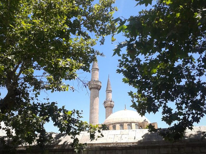 The Tekkiye Mosque or Sultan Selim Mosque ( التكية السليمانية ) Trees Morning Syria  History Through The Lens  Historical Building Historical Monuments Historical Place Mosque Mosques Of The World Mosques No Edit/no Filter Damascus  Damascus In Photos دمشق  سوريا Green Color Old Architecture Islam Islamic Architecture Islamic Art Islamicarchitecture Islamic Design Historical History Nature Photography